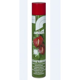 ABRILLANTADOR FLORALIFE 750 ML